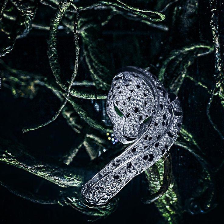 "AlmaKarina Jewelry Photography. ""Night Shades 🌿 Cartier Bracelet."""
